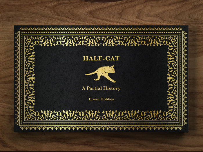 half-cat-book