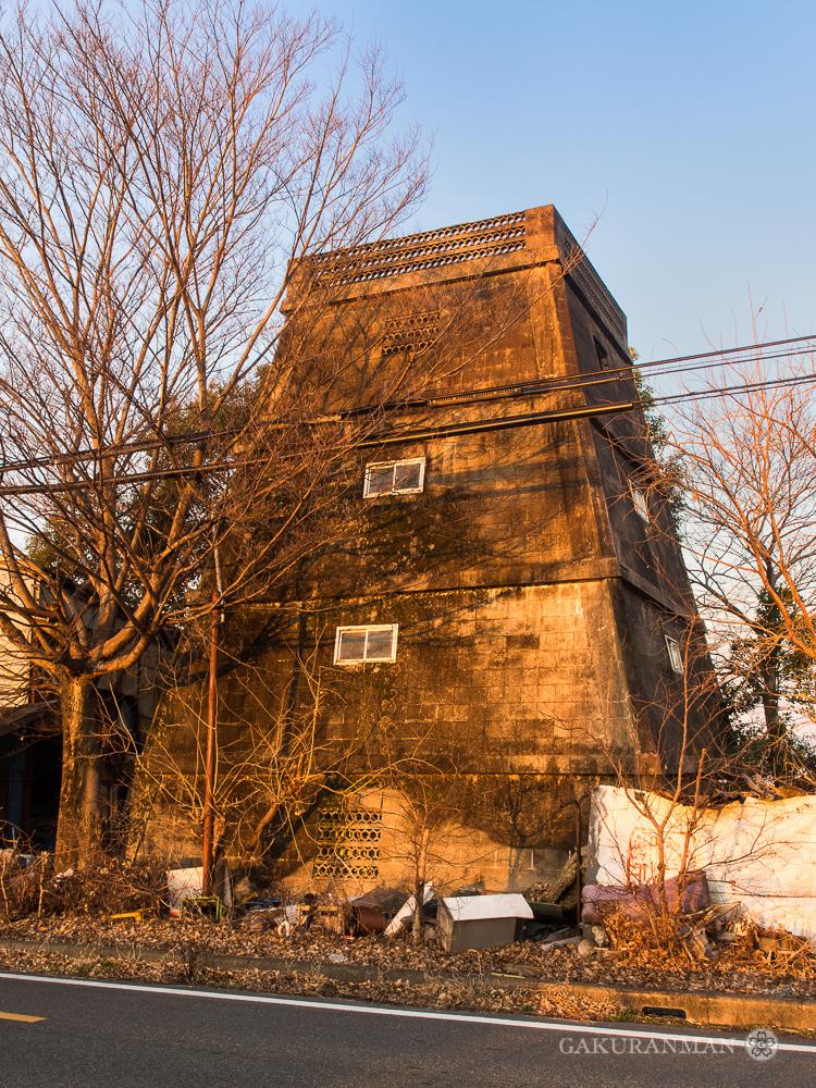 Shadow Skull Tower Dokuro-skull-tower